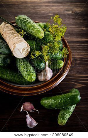 Raw cucumbers, garlic, horseradish and fennel on wooden background