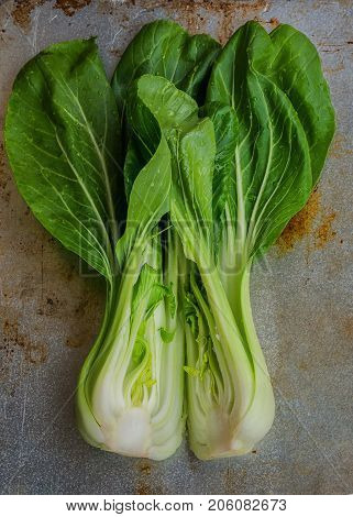 Chinese Cabbage, Qing Geng Cai Background