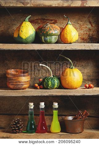 Autumn arrangement: Various types of decorative and edible pumpkins with magic potion bottles and bowls on old wooden shelf.