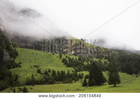 Forest And Mountain In Kaunergrat Nature Park In Tyrol, Austria