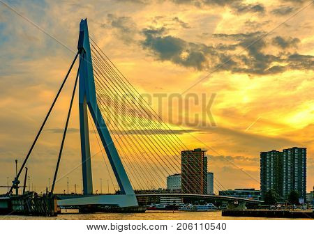 Rotterdam city cityscape with Erasmus bridge at sunset. South Holland, Netherlands.