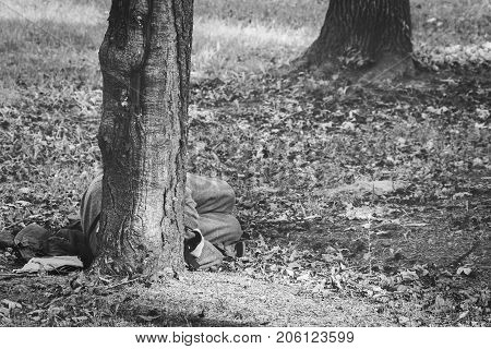 Poor homeless refugee man sleeps on the ground behind the tree of the park in the city black and white