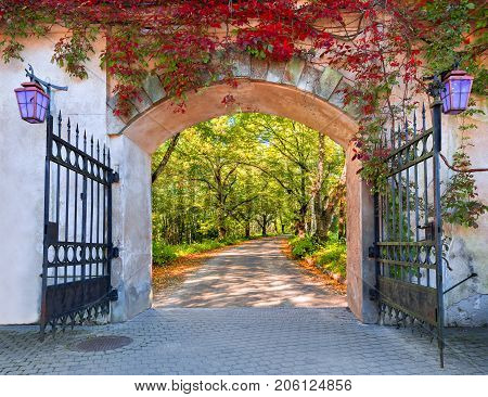 Gate to the forestry fairyland, autumn, Europe