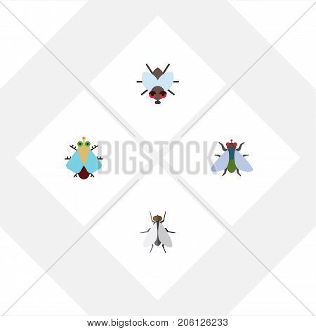 Flat Icon Buzz Set Of Tiny, Fly, Hum And Other Vector Objects