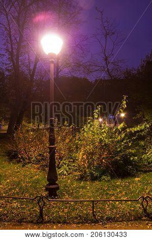 The luminous streetlight near bush in the park at dusk Saint Petersburg Russia