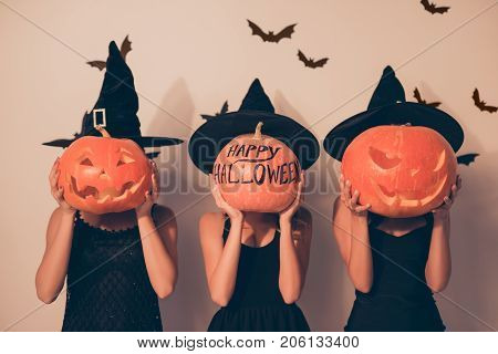 Trick Or Treat! Welcome To Nightmare! Three Mystical Ladies Worlocks With Jackolanterns, In Black Lo