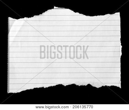Piece of torn lined paper on black