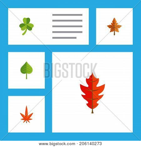Flat Icon Maple Set Of Leaf, Aspen, Hickory And Other Vector Objects