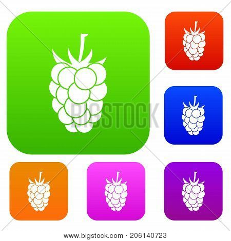 Blackberry fruit set icon color in flat style isolated on white. Collection sings vector illustration