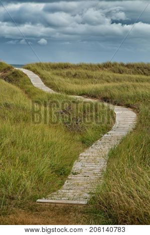 Wood path to go to the beach in the dunes