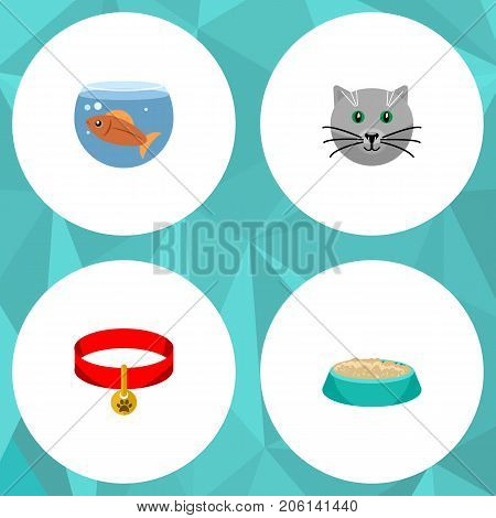 Flat Icon Pets Set Of Fishbowl, Kitty, Kitty Collar And Other Vector Objects