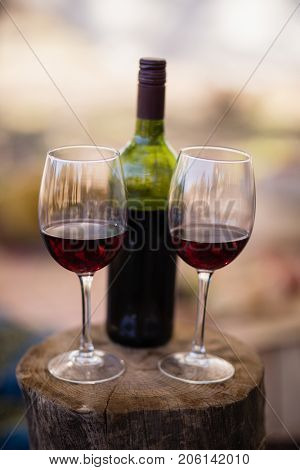 Wine bottle and glass on wooden log during safari vacation