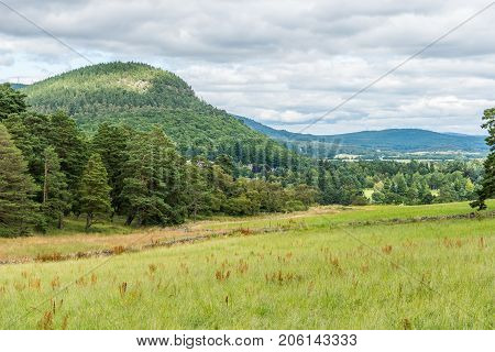A view of Ballater and Craigendarroch and the pine forests.