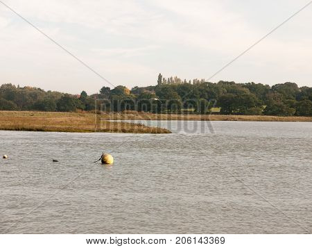 Marina Ball Buoy Floating On Water Scene Landscape