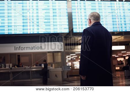 Back view of adult man wearing black coat checking flight timetable in international airport - business travel without delays concept