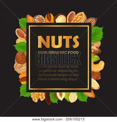Nut and seeds without shells for poster. Banner with walnut and almond, pistachio and hazel, pecan and filbert. Advertising sign. Agriculture and appetizer, farming and vegan nutrition, food theme