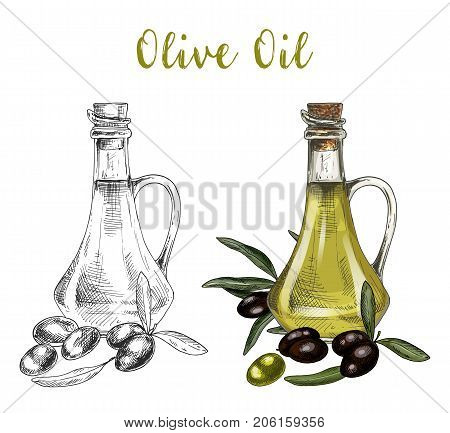 Sketch of bottle with cork or glassware container, bulb with olive oil near branch with leaves and berries. Healthy vegan nutrition or vegetarian drink product, veggie ingredient. Organic food theme