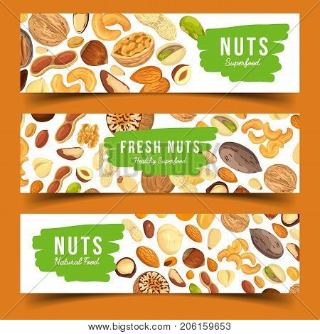 Horizontal banners for vegetarian nut food. Vegan nutmeg and veggie pecan, ripe hazel at shop badge or store sign. Diet and crop, harvest and agriculture, botany and plant, advertising, selling theme