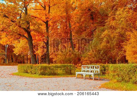 Fall landscape. White bench in the fall park under colorful fall trees. Fall trees in the park - fall cloudy landscape. Fall background