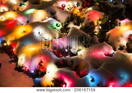 Multicolored Christmas lights under the snow. background of colorful spots of light. snow covered the Christmas lights on the bushes outside