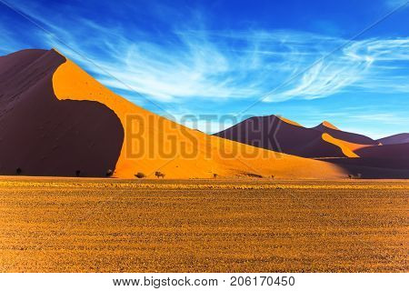 The most ancient in the world Namib Desert, South Africa. Sunset in the desert. The concept of extreme and exotic tourism