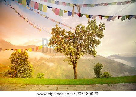 Buddhist tibetan prayer flags against blue cloudy sky. Many colorful waving flags suspended between trees. Himalayas mountain landscape. Trekking in Nepal. Holiday, travel, sport, recreation