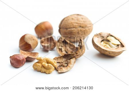 Cracked dried walnuts and hazelnuts isolated on white background. Tasty nuts.