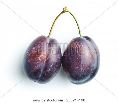 Fresh blue plums isolated on white background.
