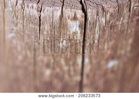 Round rustic weathered wood background texture blur