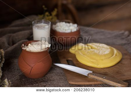 Organic milk cottage cheese and sour cream in vintage dish on rustic background