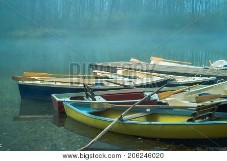 Close-up of Boats at the Lake and a Forest on a misty Morning View on colorful Rowboats and Paddles on a misty Morning. Natural Background