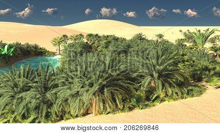 Wonderful sight on Sahara desert at sundown 3d rendering