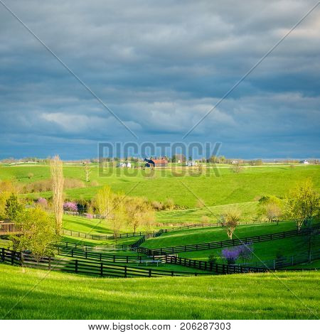 Beautiful springtime scene in Kentucky's Bluegrass region