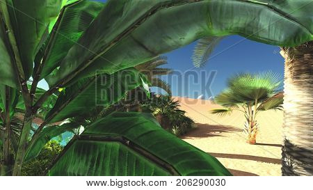Luxurious tropical vegetation on wasteland later in the day, 3d rendering