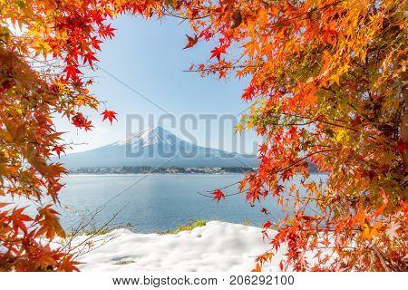 Mt. Fuji in autumn at Kawaguchiko or lake Kawaguchi in Fujikawaguchiko Japan (Selective Focus at Maple Leaf)
