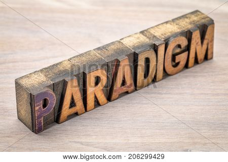 paradigm - a word abstract in vintage wooden letterpress printing blocks