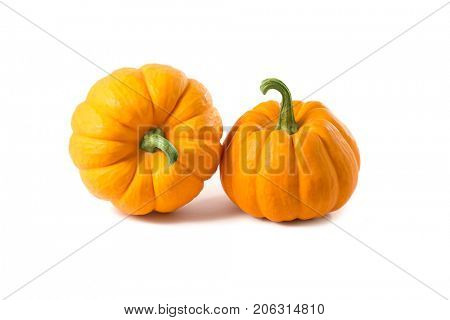 Studio shot of two decorative orange pumpkins, isolated on white background