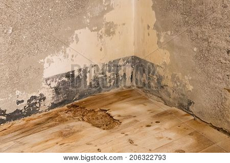 Water Damaged Floor And Wall