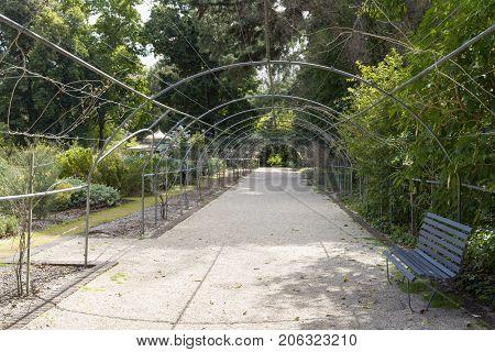 Metal Framed Arbor, Adelaide Botanic Garden