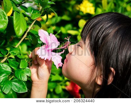 Asian Child Smelling a Pink Flower in the Day