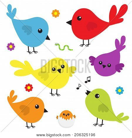 Bird icon set. Cute cartoon colorful character. Birds baby collection. Decoration element. Singing song. Flower worm insect music note shell nesting. Flat design. White background. Isolated. Vector