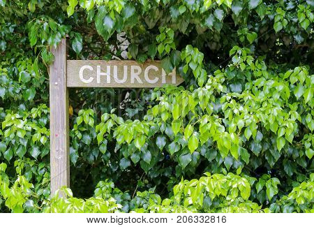 Overgrown weathered wooden signpost for church way with green hedge background