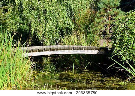 Beautiful small old wooden bridge over water.