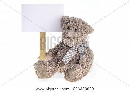 Sitting Teedy Bear plush toy withinformation board