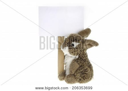 Brown rabbit plush toy with white information board