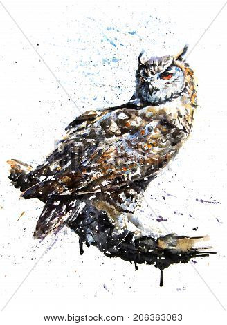 Watercolor owl on branch with splatter watercolor effect