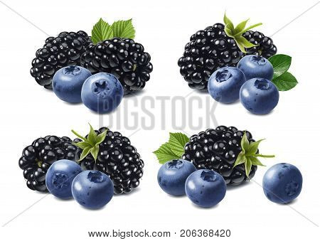 Black berry blueberry set isolated on white background as package design elements