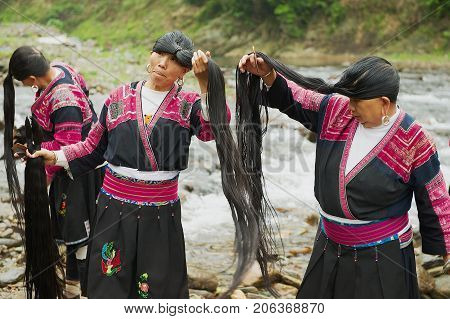 LONGJI, CHINA - MAY 06, 2009: Unidentified women brush and style hair in Longji, China. Women of Red Yao people living in Longji Yao village circa Guilin China have one of the longest hair in the world.