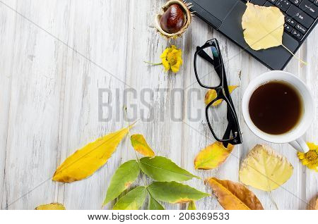 Autumn Still Life With Cup Of Tea And Leaves.