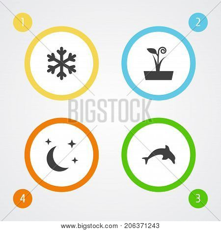 Collection Of Flowerpot, Winter Snow And Other Elements.  Set Of 4 Bio Icons Set.